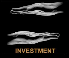 investmentBTn.jpg - large